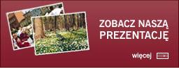 Powiat Wrzesiński - zobacz naszą prezentację